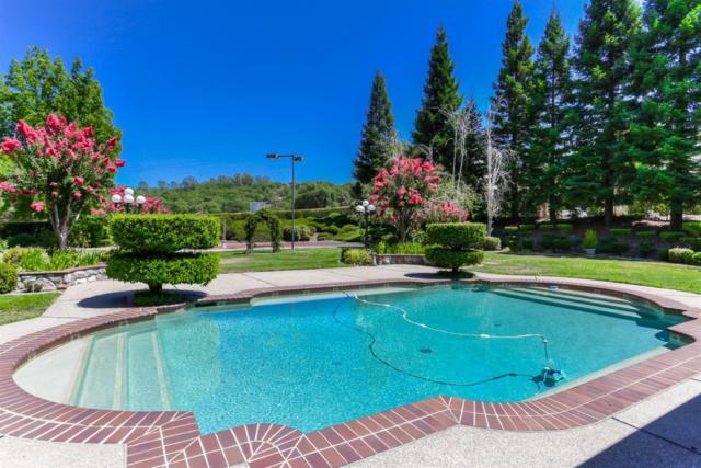 5050 Lexington Circle, Loomis, CA 95650 (MLS #19053540) :: Heidi Phong Real Estate Team