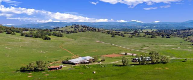 14570 Twist Road, Jamestown, CA 95327 (MLS #19053629) :: REMAX Executive