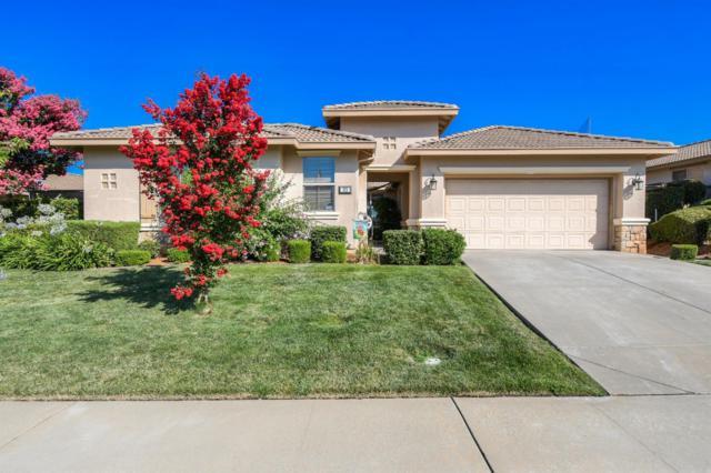 325 Pinnacle Lane, Ione, CA 95640 (MLS #19053764) :: Heidi Phong Real Estate Team