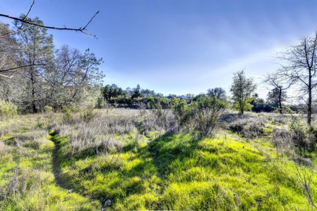 6260 Wells Avenue, Loomis, CA 95650 (MLS #19053909) :: Heidi Phong Real Estate Team