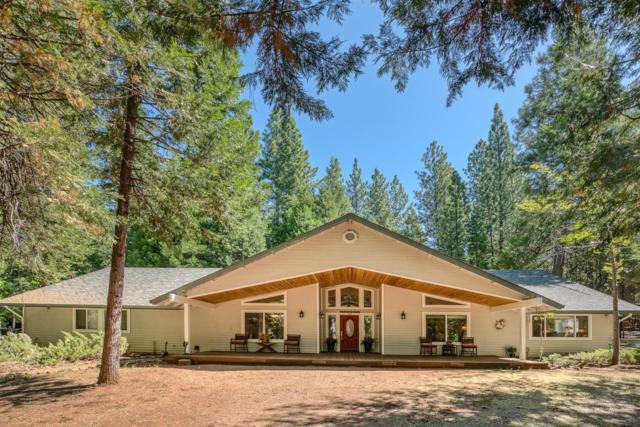 19840 Ponderosa Drive, Volcano, CA 95689 (MLS #19053972) :: Heidi Phong Real Estate Team