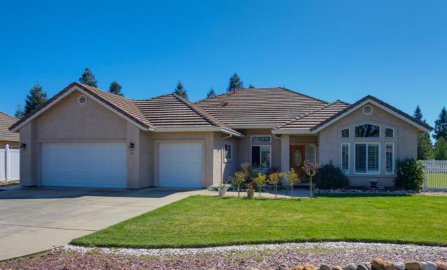 50 Saint Andrews Road, Valley Springs, CA 95252 (MLS #19055200) :: Heidi Phong Real Estate Team