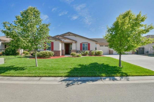 2024 Abelia Court, Plumas Lake, CA 95961 (MLS #19055263) :: Heidi Phong Real Estate Team
