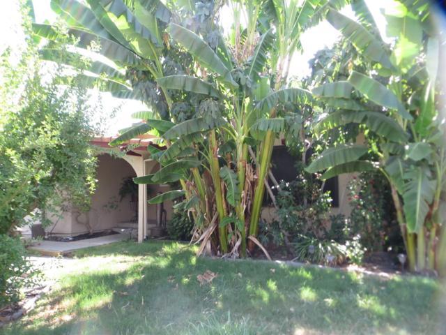 2901 Salluce, Denair, CA 95316 (MLS #19055341) :: Heidi Phong Real Estate Team