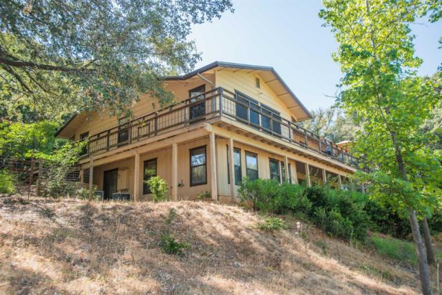 18110 Ridge Road, Pine Grove, CA 95665 (MLS #19055397) :: Heidi Phong Real Estate Team