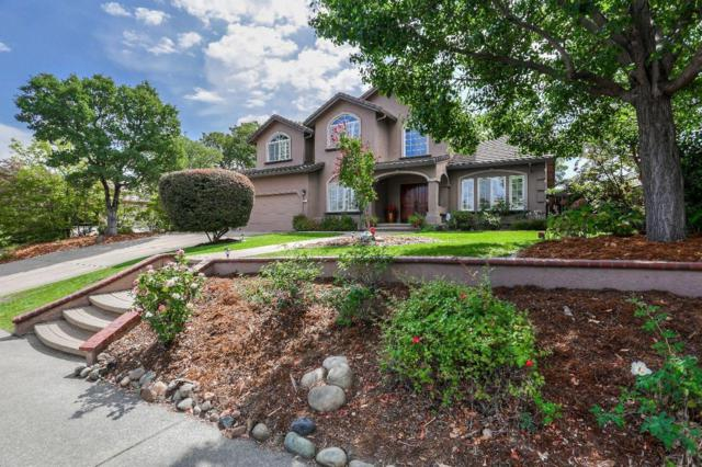 255 American River Canyon Drive, Folsom, CA 95630 (MLS #19055882) :: Heidi Phong Real Estate Team