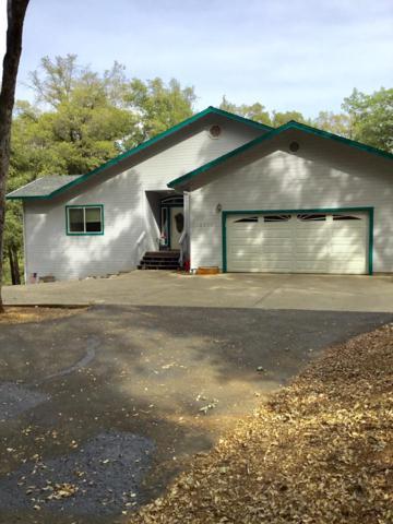 12777 Lookout Ridge Lane, Pine Grove, CA 95665 (MLS #19055960) :: Heidi Phong Real Estate Team