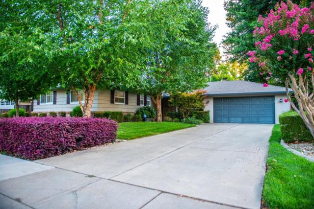 6016 13th Street, Sacramento, CA 95822 (MLS #19055965) :: Heidi Phong Real Estate Team