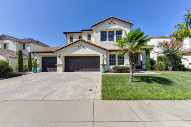 5974 Tanus Circle, Rocklin, CA 95677 (MLS #19056096) :: Heidi Phong Real Estate Team