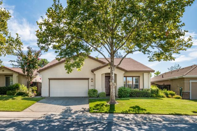 3907 Coldwater Drive, Rocklin, CA 95765 (MLS #19056294) :: The MacDonald Group at PMZ Real Estate