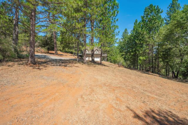 14601 Tanyard Lane, Pine Grove, CA 95665 (MLS #19056374) :: Heidi Phong Real Estate Team