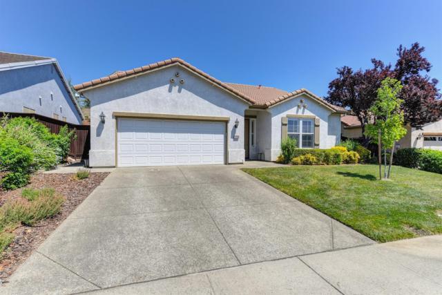 2806 Black Oak Drive, Rocklin, CA 95765 (MLS #19056386) :: Heidi Phong Real Estate Team