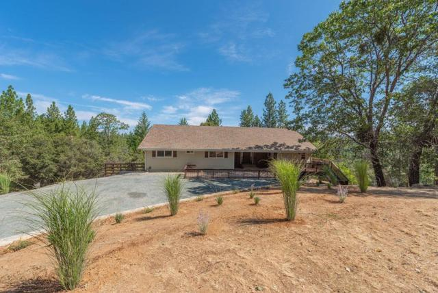 15795 Soke Springs Ranch Road, Sutter Creek, CA 95685 (MLS #19056389) :: REMAX Executive