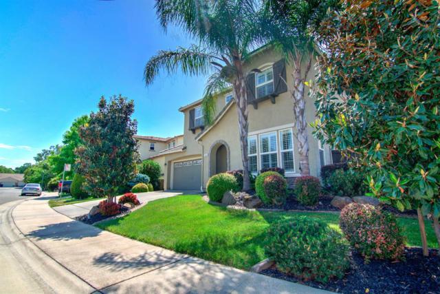 3430 River Shoal Avenue, Sacramento, CA 95833 (MLS #19056504) :: Heidi Phong Real Estate Team