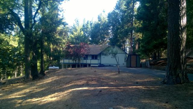 5686 Blue Mountain Road, Grizzly Flats, CA 95636 (MLS #19056658) :: Heidi Phong Real Estate Team
