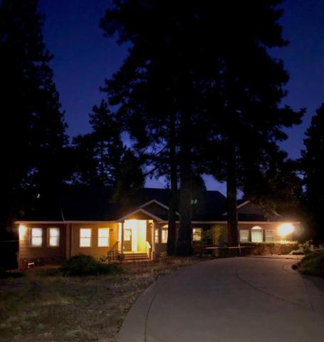 13590 Elderberry Court, Pine Grove, CA 95665 (MLS #19056727) :: Heidi Phong Real Estate Team
