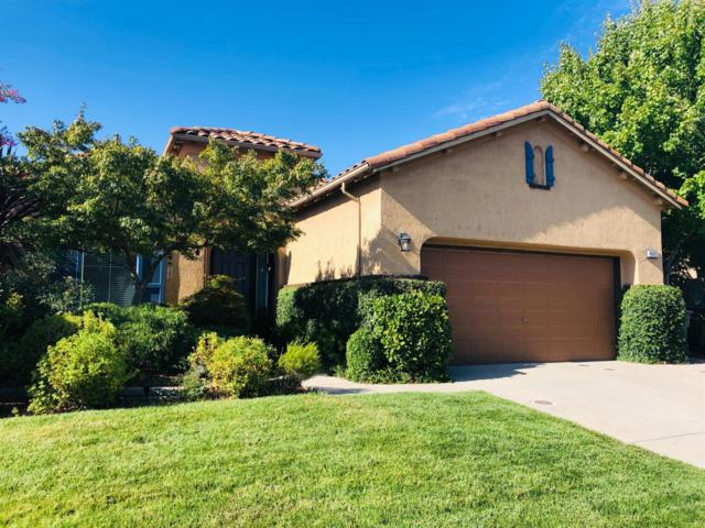 9425 Loire Valley Way, Elk Grove, CA 95624 (MLS #19056751) :: Heidi Phong Real Estate Team