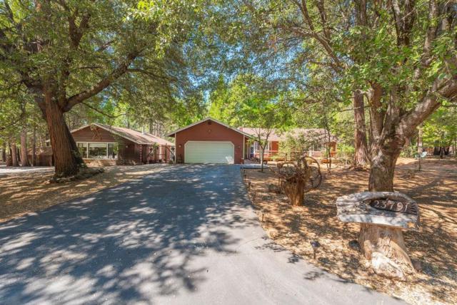 23791 Golden Ridge Drive, Volcano, CA 95689 (MLS #19056803) :: Heidi Phong Real Estate Team