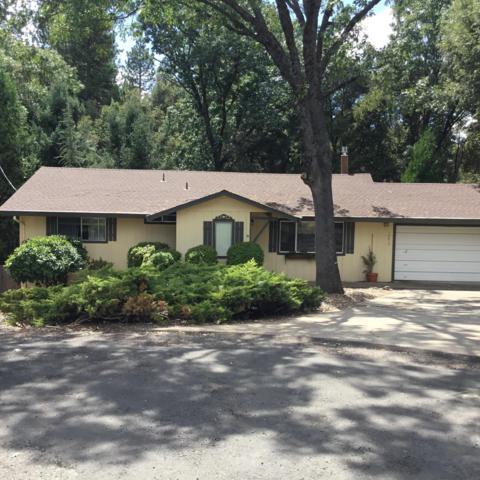 14415 Vista Court, Pine Grove, CA 95665 (MLS #19057040) :: Heidi Phong Real Estate Team