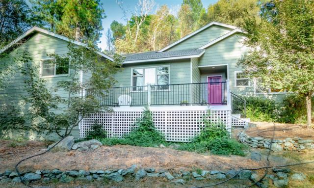 4310 Empire Creek Circle, Georgetown, CA 95634 (MLS #19057041) :: Heidi Phong Real Estate Team