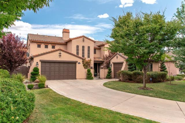 804 Dusty Trail Court, Rocklin, CA 95765 (MLS #19057269) :: Heidi Phong Real Estate Team