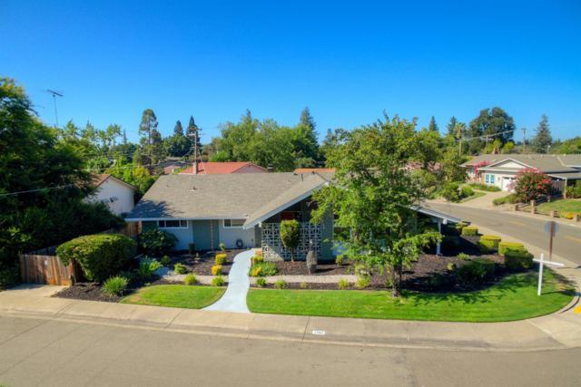 7784 Palmyra Drive, Fair Oaks, CA 95628 (MLS #19057354) :: Heidi Phong Real Estate Team
