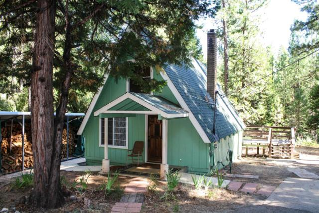 5385 Blue Mountain Drive, Grizzly Flats, CA 95636 (MLS #19057363) :: Keller Williams - Rachel Adams Group