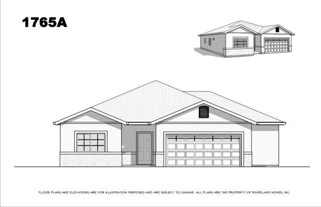 1420 St. Andrews Lane, Ione, CA 95640 (MLS #19057455) :: Heidi Phong Real Estate Team