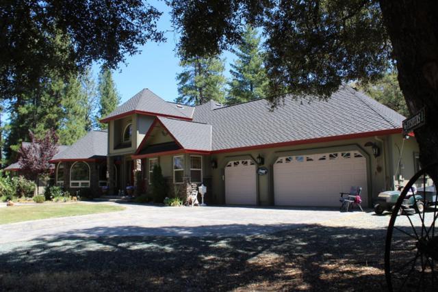 13932 Logans Alley, Pine Grove, CA 95665 (MLS #19057595) :: Heidi Phong Real Estate Team