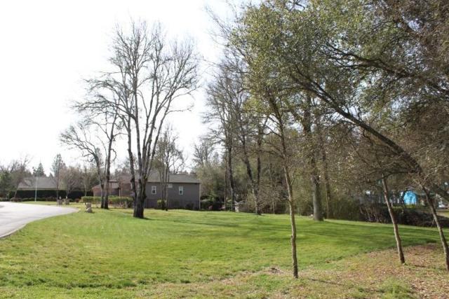 10140 Valley Oak Court, Penn Valley, CA 95946 (MLS #19057875) :: Heidi Phong Real Estate Team