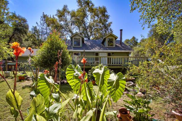 8440 State Highway 193, Newcastle, CA 95658 (MLS #19059192) :: Dominic Brandon and Team
