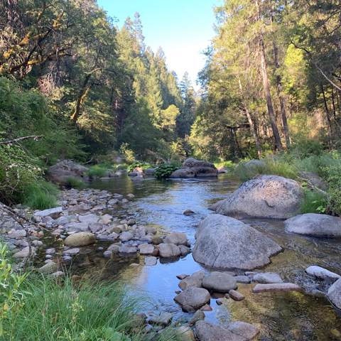 0 Forest Service Road, Omo Ranch, CA 95684 (MLS #19064676) :: REMAX Executive