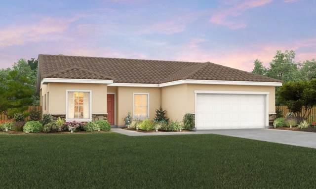 1673 Ryegrass Way, Los Banos, CA 93635 (MLS #19064824) :: Heidi Phong Real Estate Team