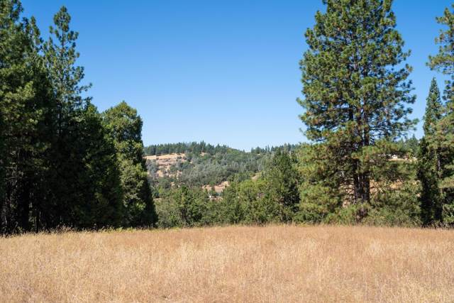 0 Pleasant Valley, Placerville, CA 95667 (MLS #19064855) :: The MacDonald Group at PMZ Real Estate