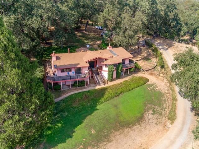 12064 Creek View Drive, Grass Valley, CA 95949 (MLS #19064882) :: REMAX Executive