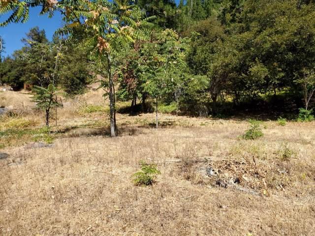 8340 High Street, Foresthill, CA 95631 (MLS #19065093) :: Heidi Phong Real Estate Team