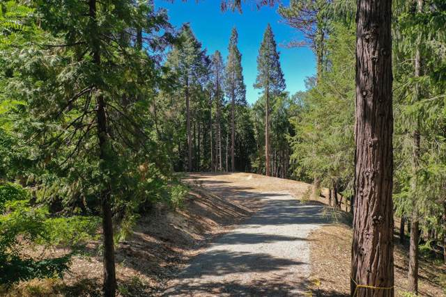 14321 Dorcelline Court, Nevada City, CA 95959 (MLS #19065231) :: The MacDonald Group at PMZ Real Estate