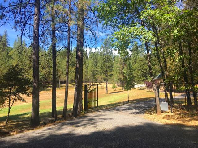 12550 Pine Cone Circle, Grass Valley, CA 94945 (MLS #19065431) :: Dominic Brandon and Team