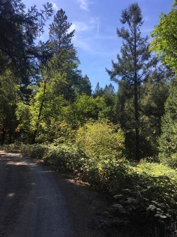1565 Clear Creek Ct., Placerville, CA 95667 (MLS #19065467) :: eXp Realty - Tom Daves