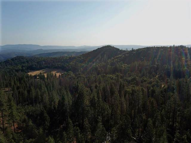0 Forest Service Rd. 2S13, Coulterville, CA 95311 (MLS #19065605) :: Heidi Phong Real Estate Team