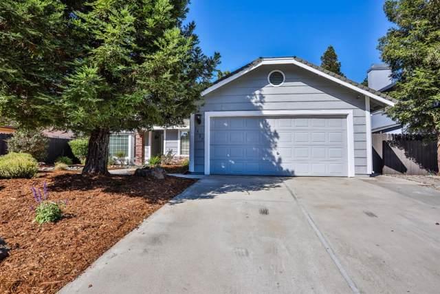 1427 Deerfield Circle, Roseville, CA 95747 (MLS #19066444) :: The Merlino Home Team