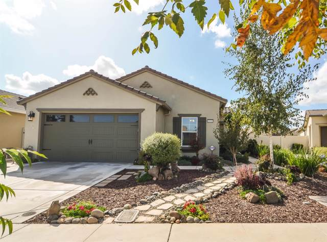 1676 Remington Oaks Street, Manteca, CA 95336 (MLS #19069012) :: REMAX Executive