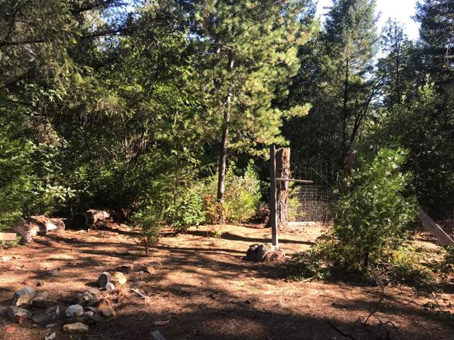 4441 Hotchkiss Hill Road, Georgetown, CA 95634 (MLS #19069430) :: The MacDonald Group at PMZ Real Estate