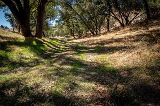 93-acres Highway 49, Plymouth, CA 95669 (MLS #19070151) :: Keller Williams - Rachel Adams Group