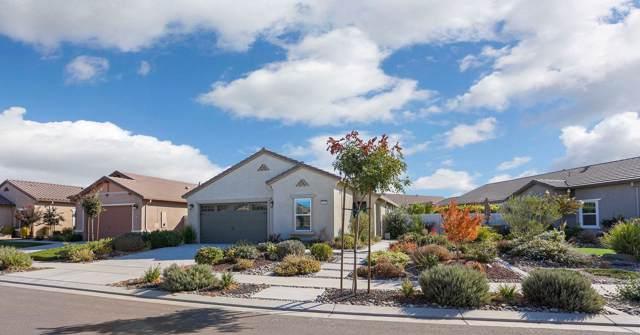 2930 Cotton Briar Lane, Manteca, CA 95336 (MLS #19070824) :: REMAX Executive