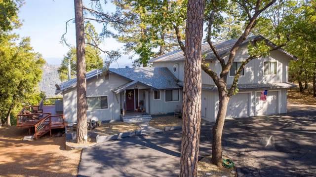 12050 Gold Strike Road, Pine Grove, CA 95665 (MLS #19071622) :: Heidi Phong Real Estate Team