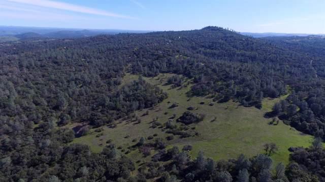 120 N Pilot View Drive, Pilot Hill, CA 95664 (MLS #19071899) :: The MacDonald Group at PMZ Real Estate