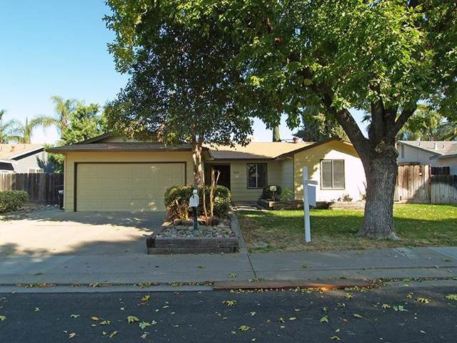 3341 Joshua Way, Modesto, CA 95355 (MLS #19072109) :: REMAX Executive