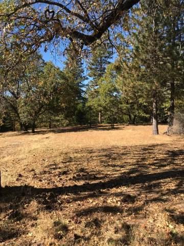 0 Shooting Star Road, Pollock Pines, CA 95726 (MLS #19072897) :: Keller Williams - The Rachel Adams Lee Group