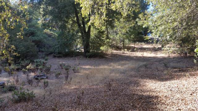 2 Toyon Rd, Pine Grove, CA 95665 (MLS #19073011) :: The MacDonald Group at PMZ Real Estate